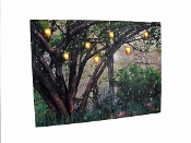 Enchanted Woods Radiance Lighted Canvas …