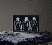 Hear No Evil, See No Evil, Speak No Evil Skeletons