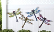 Metal Dragonfly Wall Decoration, Choice of Four Different Colors