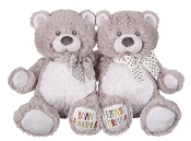 Born Together, Friends Forever Twins Bear