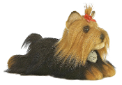 "Aurora 11"" Miyoni Yorkshire Terrier Stuffed with Brush"