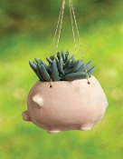 Ceramic Pig Hanging Planter